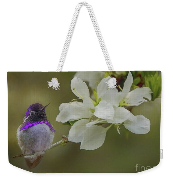 Costas Hummingbird On An Anacacho Orchid Branch Weekender Tote Bag