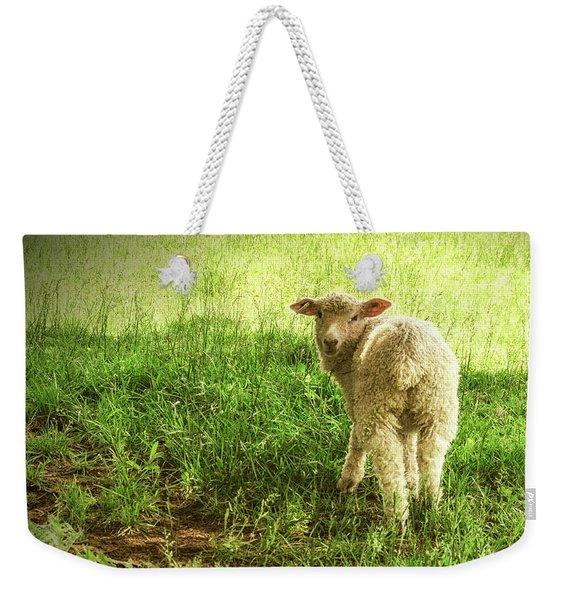 Cotswold Sheep Weekender Tote Bag