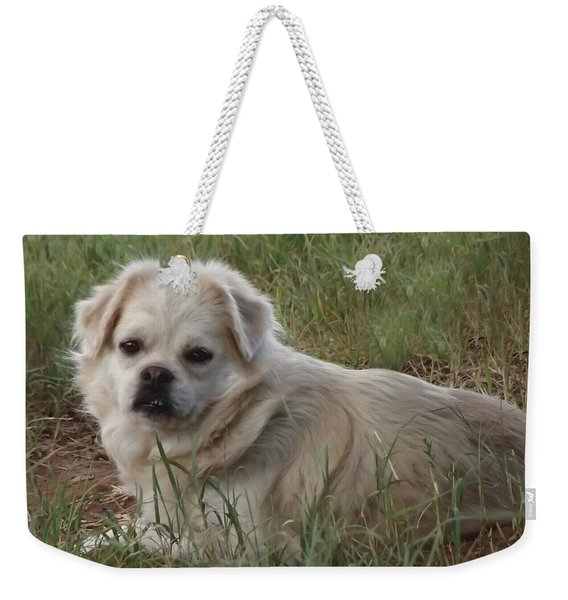Cotton In The Grass Weekender Tote Bag