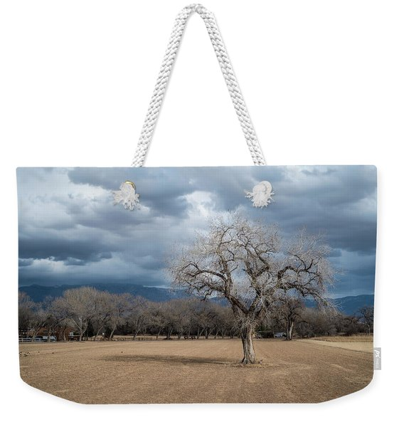 Weekender Tote Bag featuring the photograph Cottonwood At The Albuquerque Open Space Visitor Center by Mary Lee Dereske