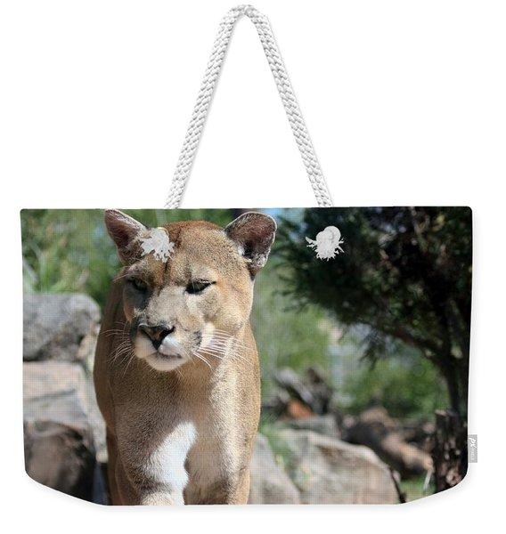 Cougar Weekender Tote Bag