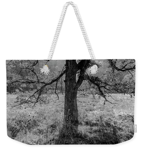 Coulee Oak Weekender Tote Bag