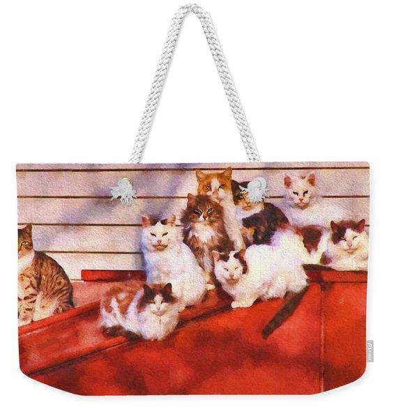 Countryside Cats Weekender Tote Bag