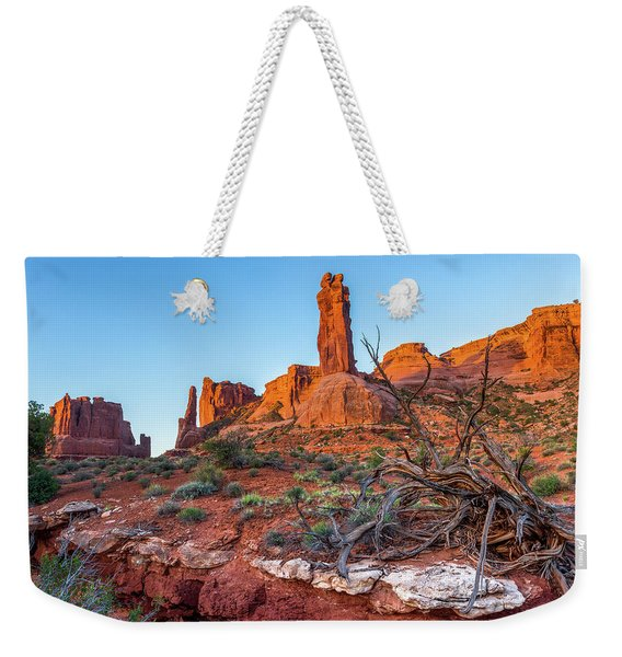 Courthouse Towers Weekender Tote Bag