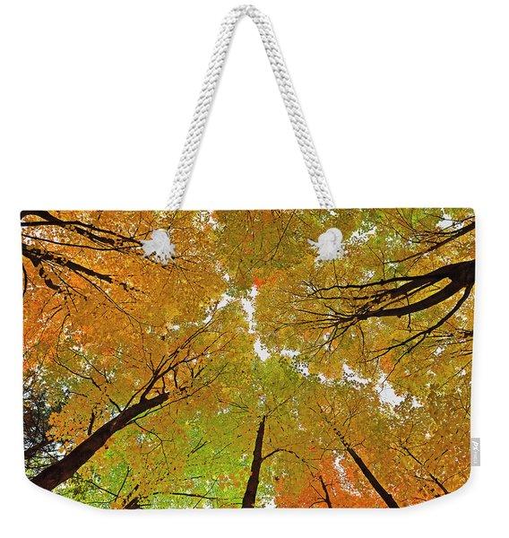 Cover Up Weekender Tote Bag