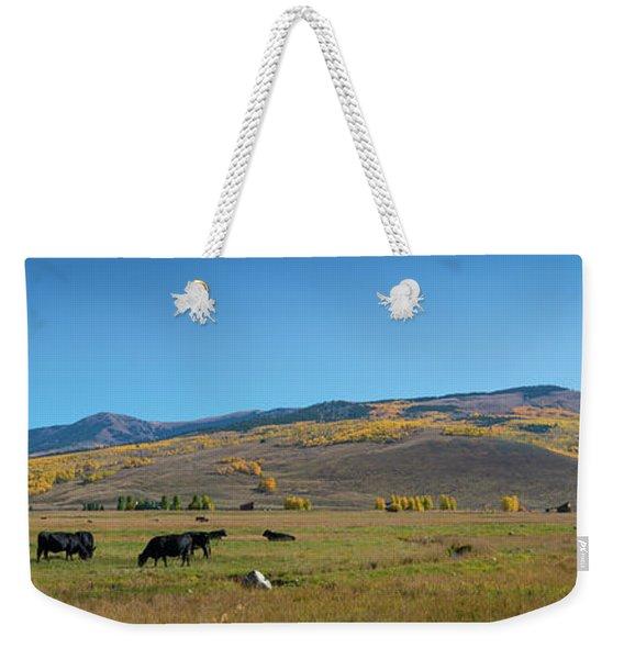 Cow Grazing In Colorado Pano Weekender Tote Bag