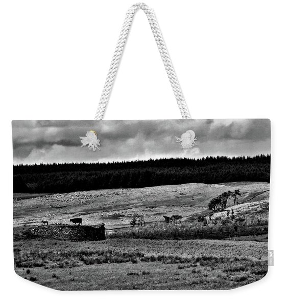 Cows On A Wall Weekender Tote Bag