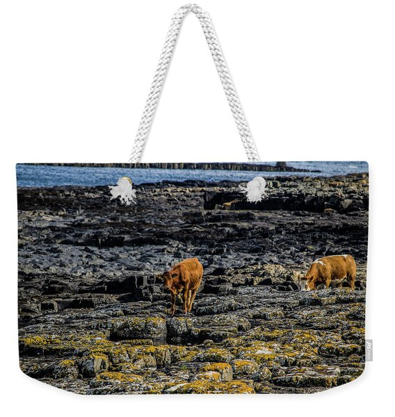 Cows On The Rocks Weekender Tote Bag