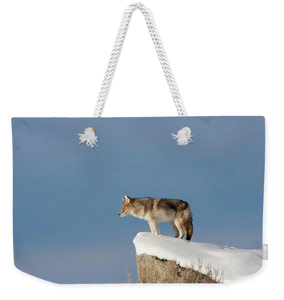 Coyote At Overlook Weekender Tote Bag