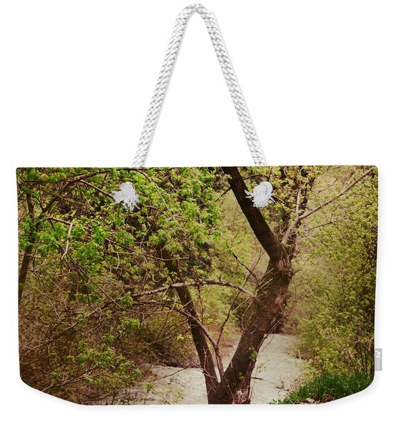 Cozy Stream In American Fork Canyon Utah Weekender Tote Bag