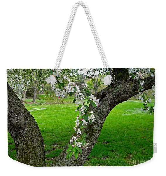Crabapple Blossoms On A Rainy Spring Day Weekender Tote Bag