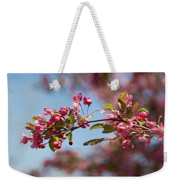 Crabapple In Spring Section 1 Of 4 Weekender Tote Bag