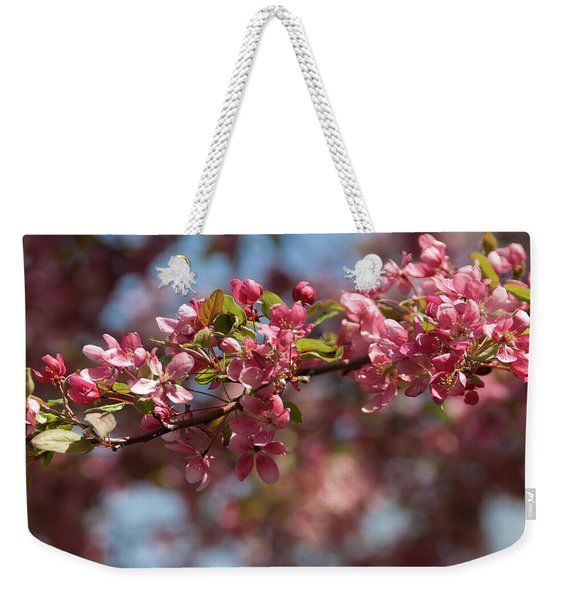 Crabapple In Spring Section 2 Of 4 Weekender Tote Bag