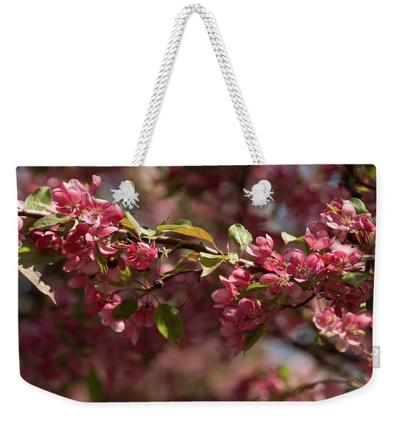 Crabapple In Spring Section 3 Of 4 Weekender Tote Bag