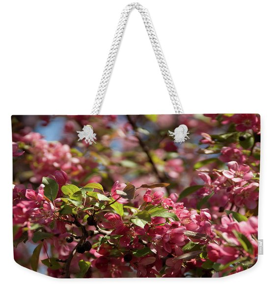 Crabapple In Spring Section 4 Of 4 Weekender Tote Bag