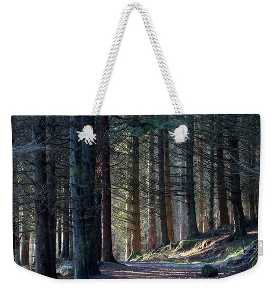 Craig Dunain - Forest In Winter Light Weekender Tote Bag