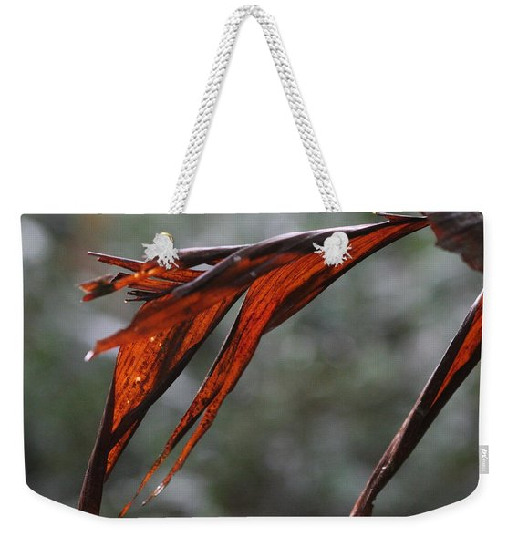 Crimson Leaf In The Amazon Rainforest Weekender Tote Bag