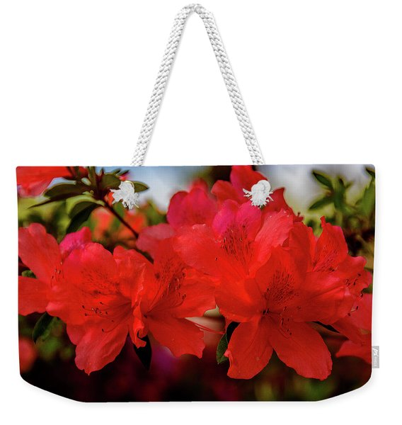 Crimson Lights Weekender Tote Bag