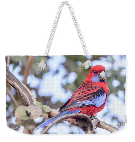 Crimson Rosella 03 Weekender Tote Bag