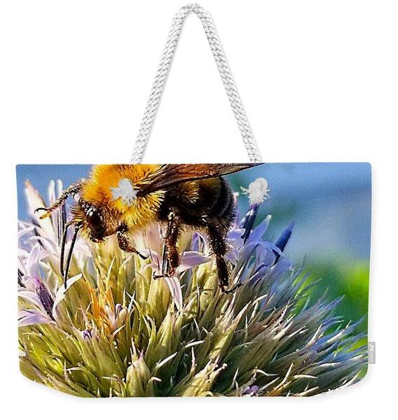 Curious Bee Weekender Tote Bag