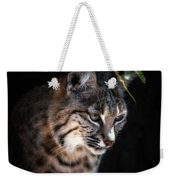 Curious Bobcat Weekender Tote Bag