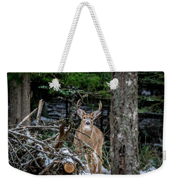 Curious Buck Weekender Tote Bag