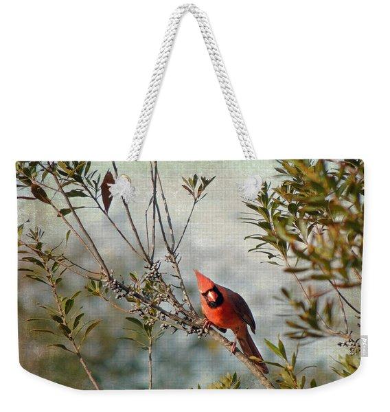 Curious Cardinal Weekender Tote Bag