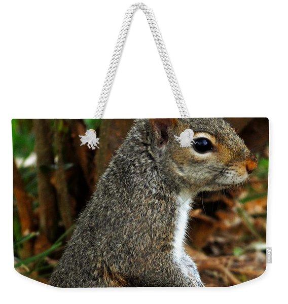 Curious Weekender Tote Bag