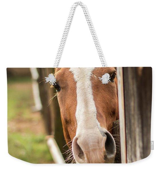 Curious Horse Weekender Tote Bag