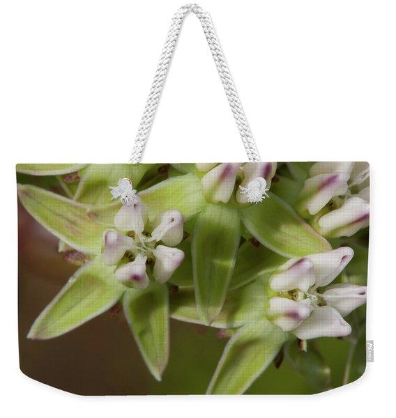 Curtiss' Milkweed #4 Weekender Tote Bag