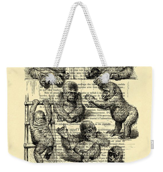 Baby Monkeys Playing Black And White Antique Illustration Weekender Tote Bag