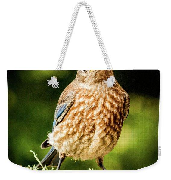 Cute Bluebird Adolescent Weekender Tote Bag