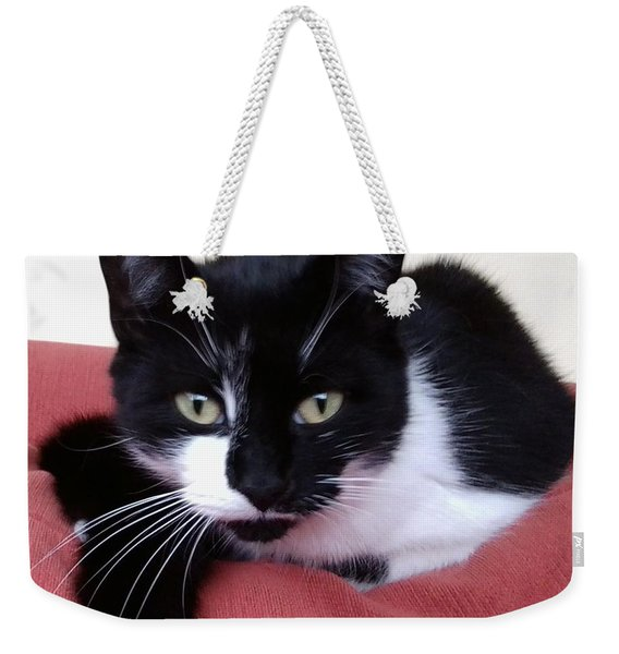 Cute Cat Weekender Tote Bag