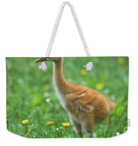 Cuteness Weekender Tote Bag