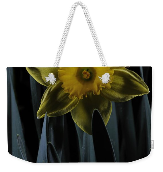 Daffodil By Moonlight Weekender Tote Bag