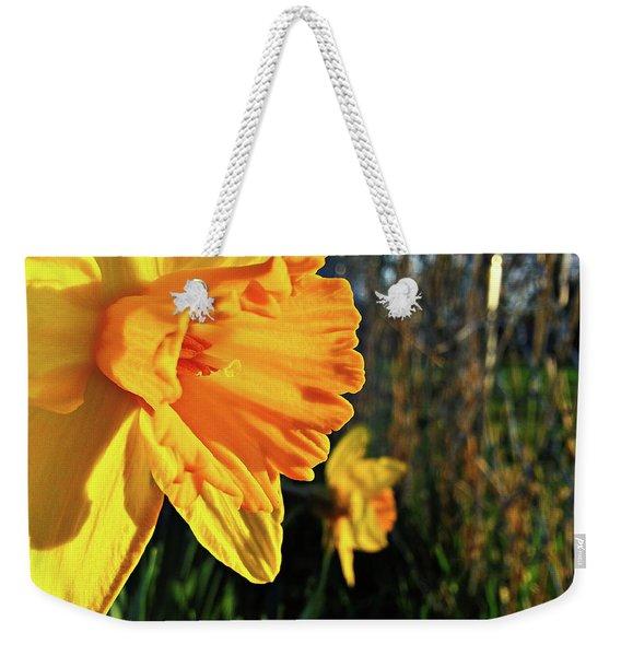 Daffodil Evening Weekender Tote Bag