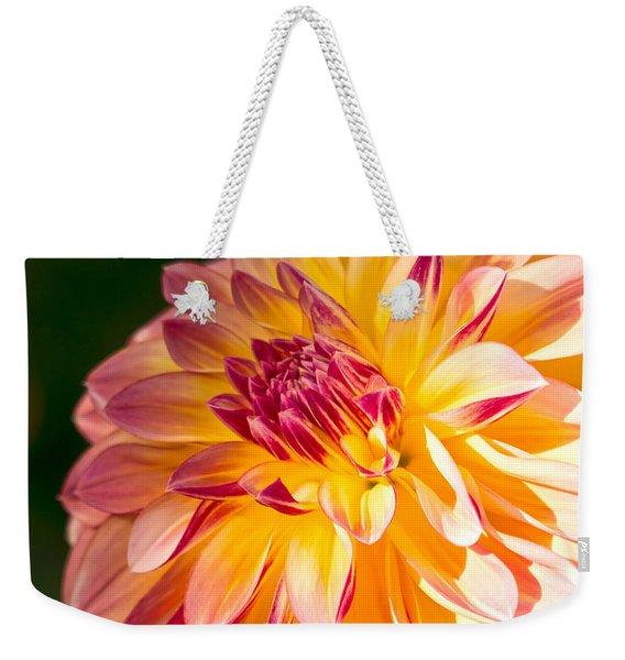 Dahlia Late Afternoon Radiance Weekender Tote Bag