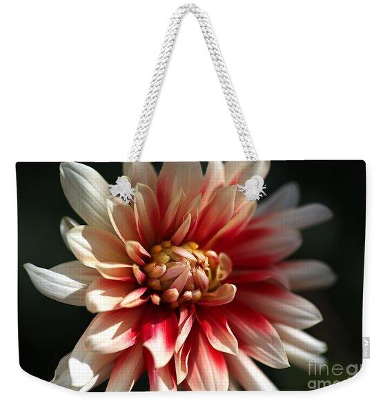 Dahlia Warmth Weekender Tote Bag