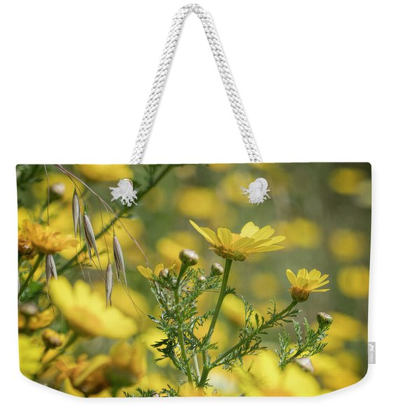 Weekender Tote Bag featuring the photograph Daisies In Spring 2 by Michael Hope