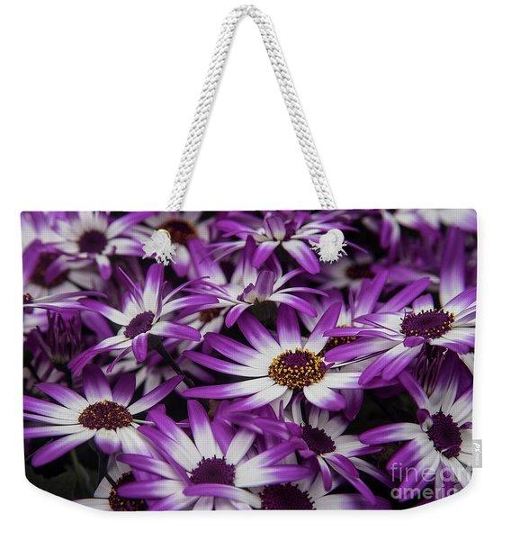 Daisy Flowers-2231 Weekender Tote Bag