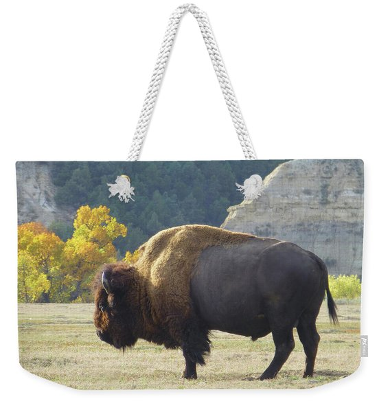 Weekender Tote Bag featuring the photograph Dakota Badlands Majesty by Cris Fulton