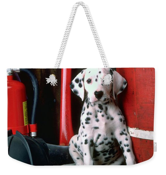Dalmatian Puppy With Fireman's Helmet  Weekender Tote Bag