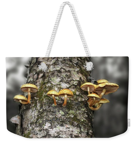 Weekender Tote Bag featuring the photograph Dance Around The Ancient Birch by Wayne King