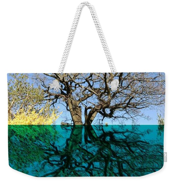 Dancers Tree Reflection  Weekender Tote Bag
