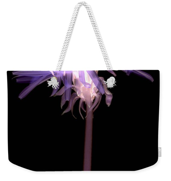 Weekender Tote Bag featuring the photograph Dandelion by Clayton Bastiani