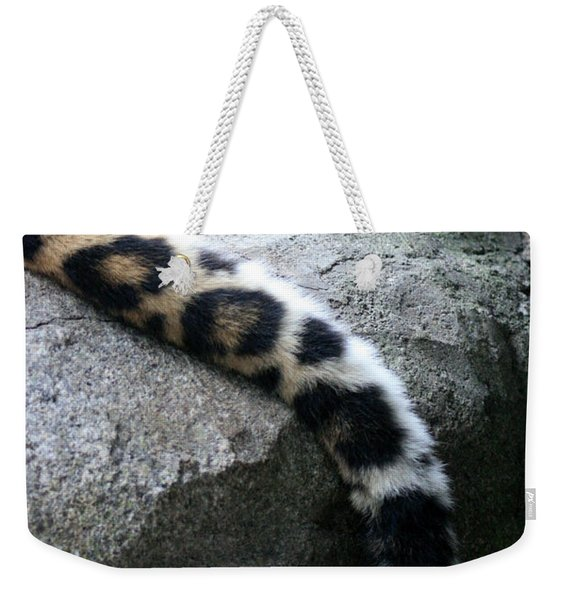 Dangling And Dozing Weekender Tote Bag