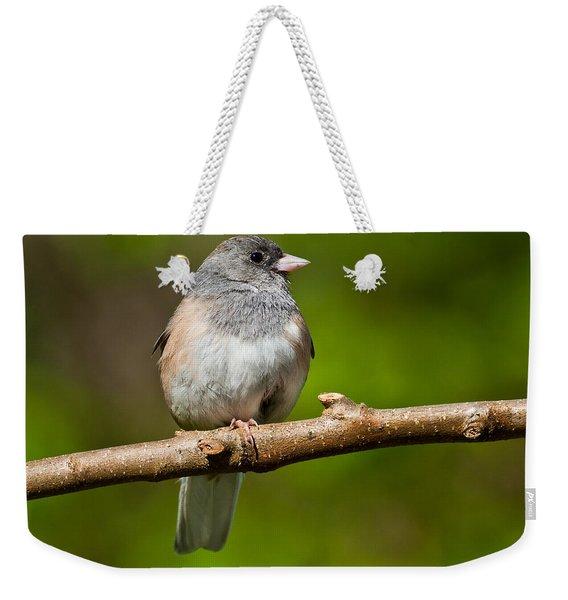 Dark Eyed Junco Perched On A Branch Weekender Tote Bag