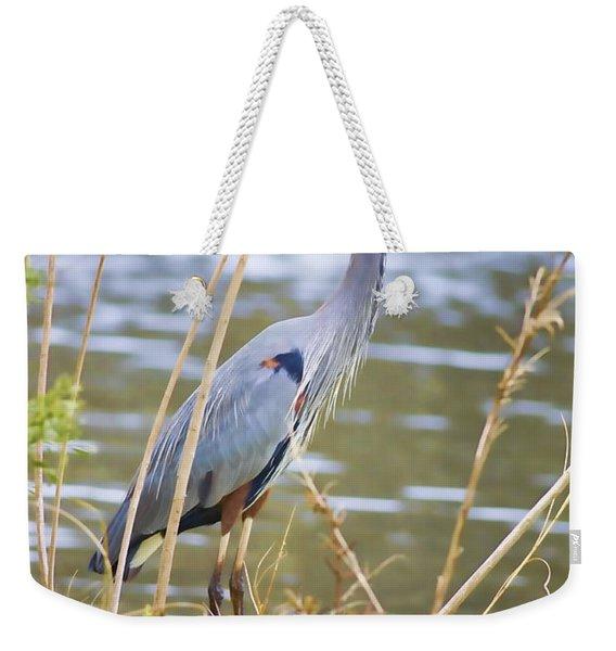 De Leon Springs Blue Weekender Tote Bag