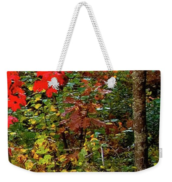 6 Of 6 Dead River Falls  Marquette Michigan Section Weekender Tote Bag