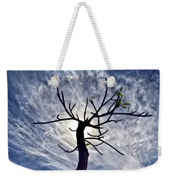 Dead Tree In St. Johns Antigua Weekender Tote Bag
